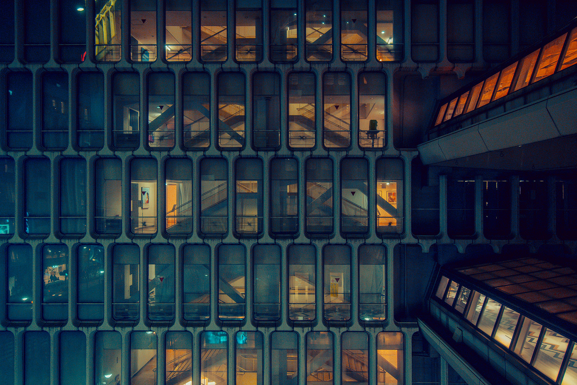 TOKYO NIGHTS - View the Series ▸
