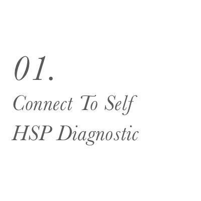 The HSP Flow Framework_0005_01.   Connect To Self   HSP Diagnostic   .jpg