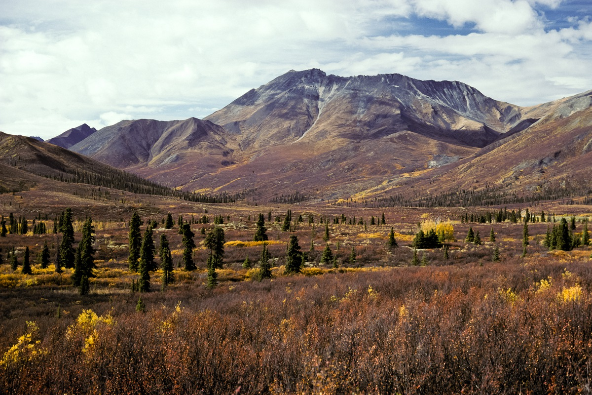 Siegfried-Salzmann-Fotografie-Kanada-Yukon.jpg