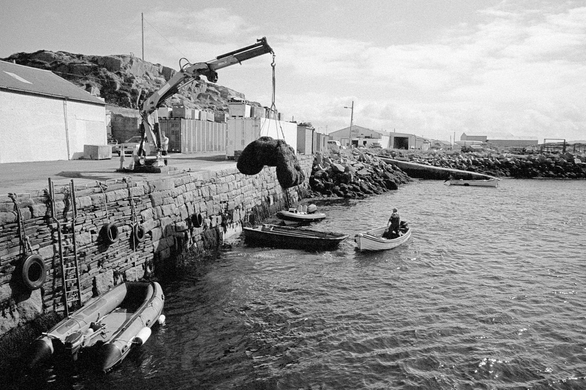 Siegfried-Salzmann-Fotografie-Irland 2017-14.jpg