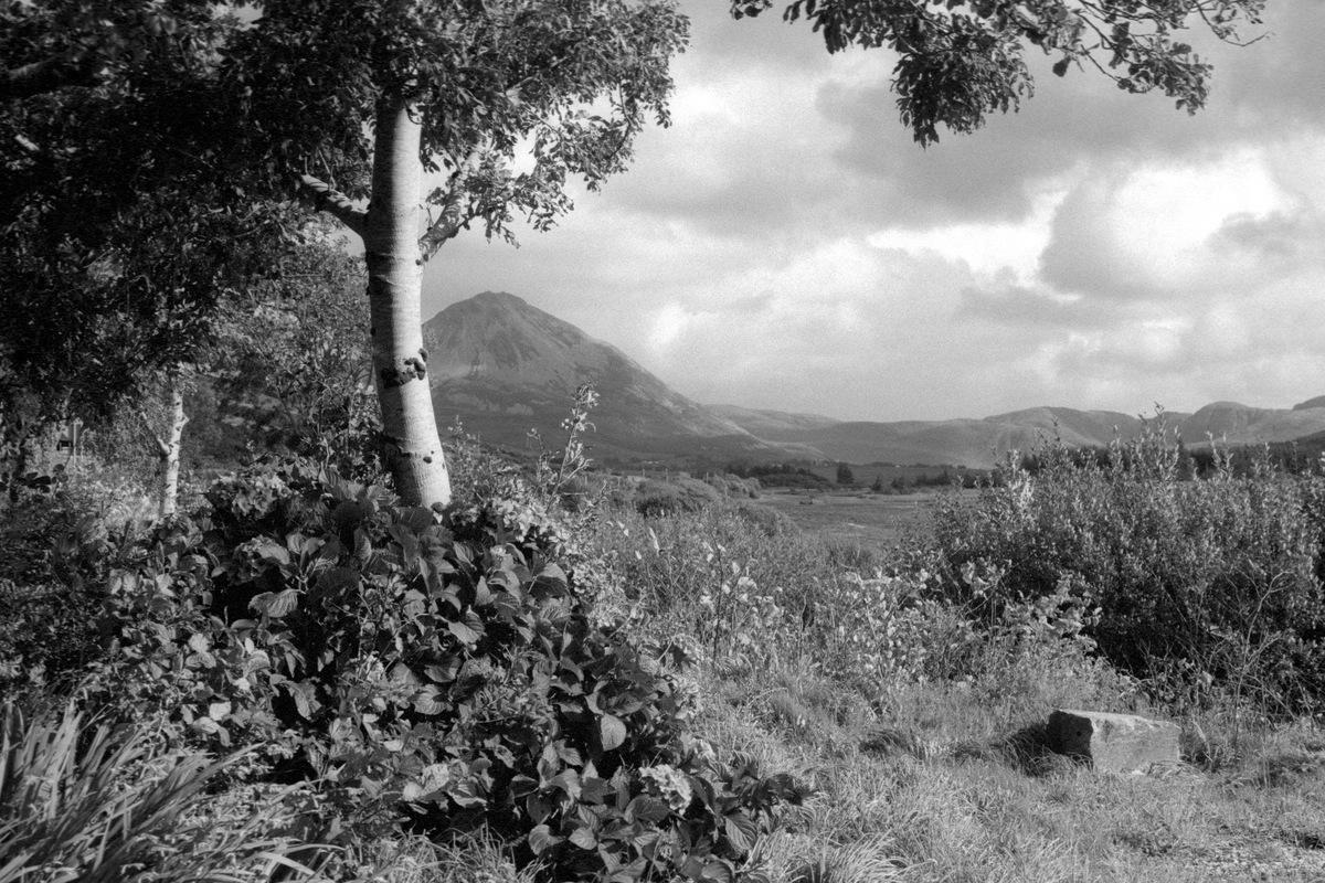 Siegfried-Salzmann-Fotografie-Irland 2018h-3.jpg