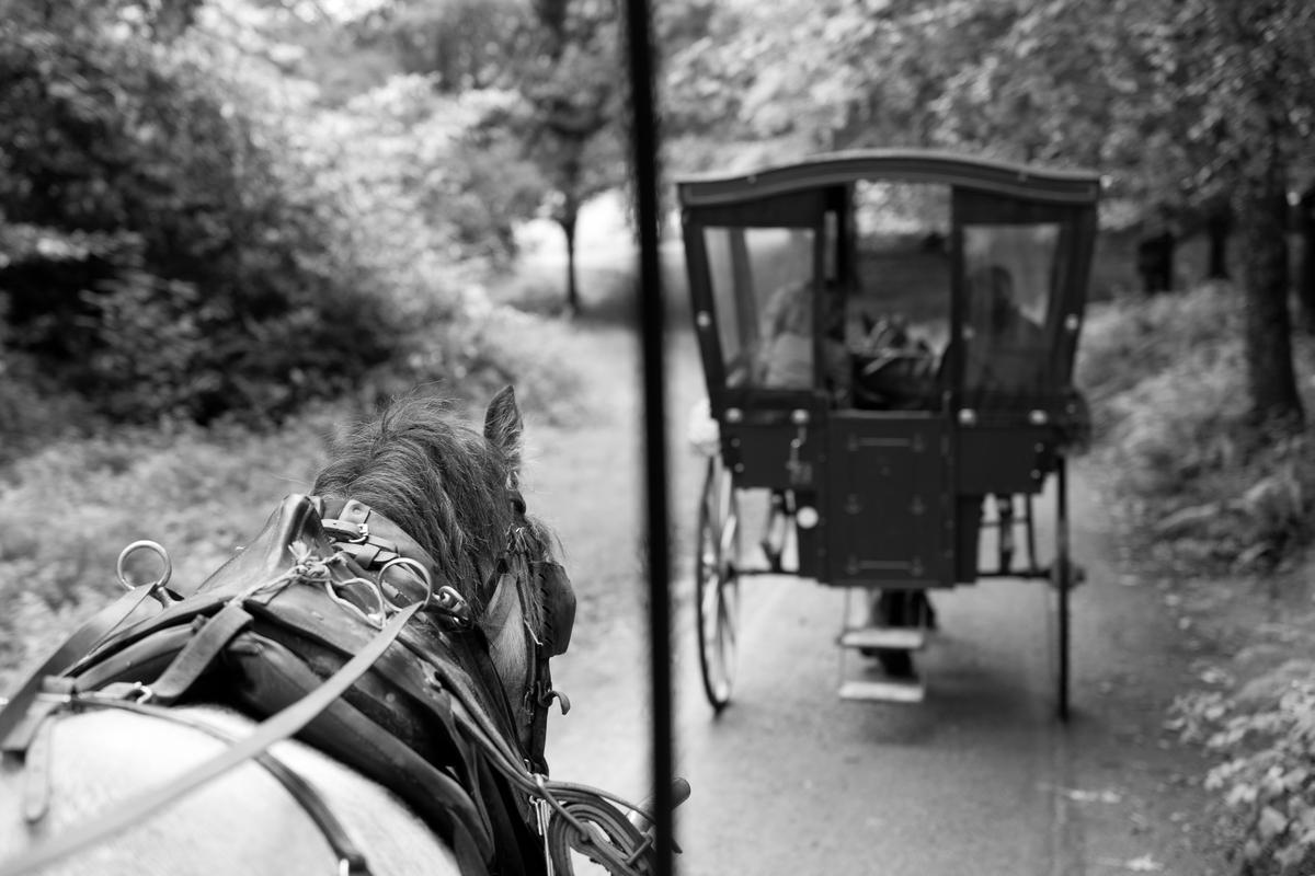Siegfried-Salzmann-Fotografie-Irland 2015-14.jpg