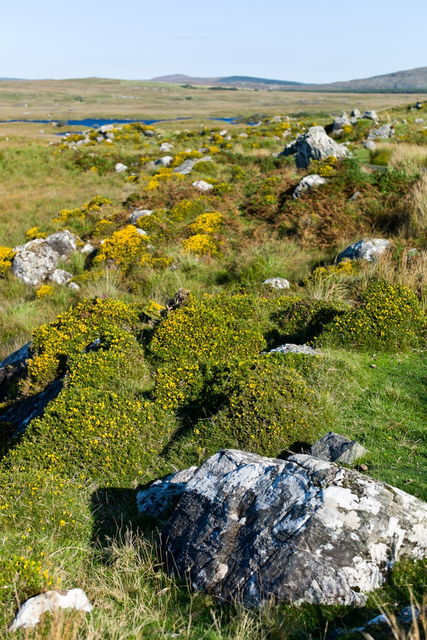 Siegfried-Salzmann-Fotografie-Irland 2013.jpg