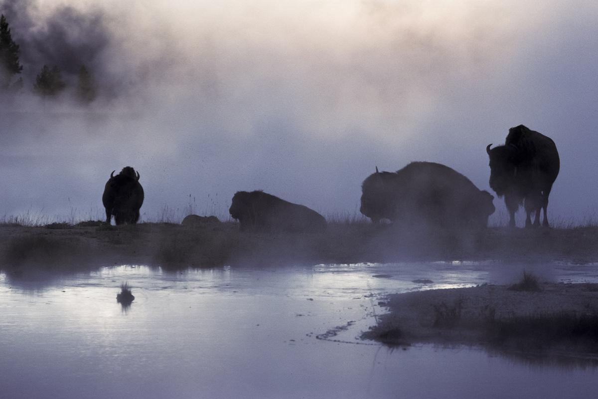 Siegfried-Salzmann-Fotografie-USA-Südwesten-3.jpg