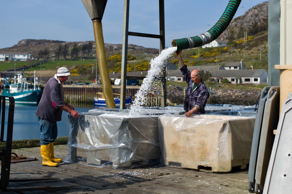 Siegfried-Salzmann-Fotografie-Schottland 2012-11.jpg