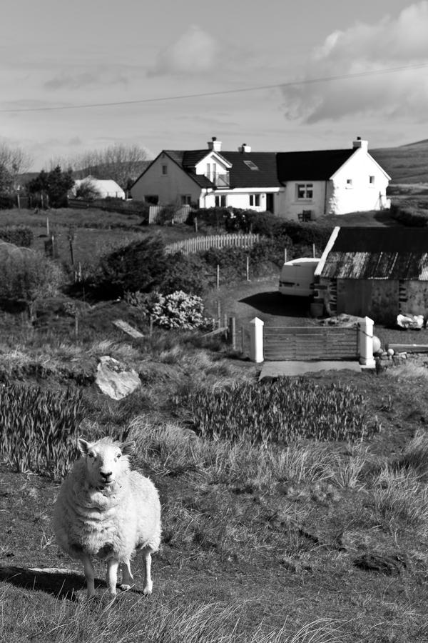 Siegfried-Salzmann-Fotografie-Schottland 2015.jpg