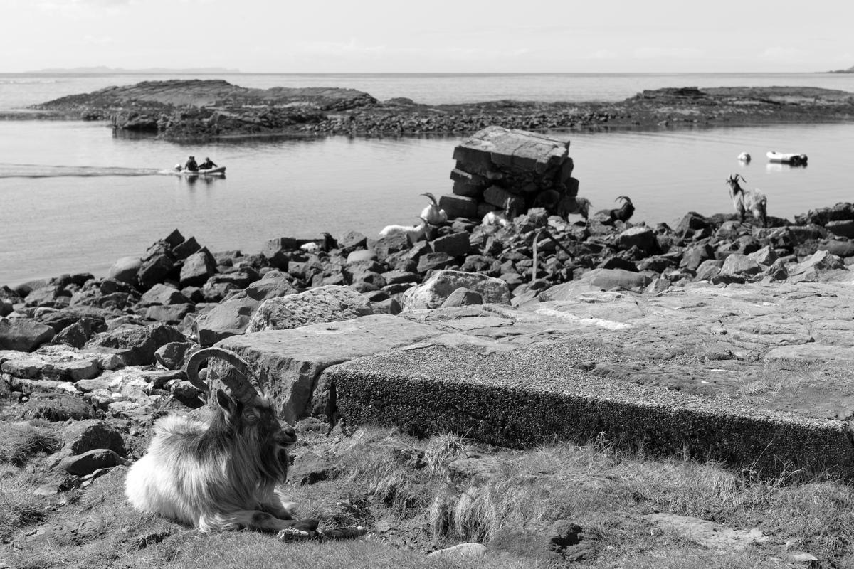 Siegfried-Salzmann-Fotografie-Schottland 2018-9.jpg
