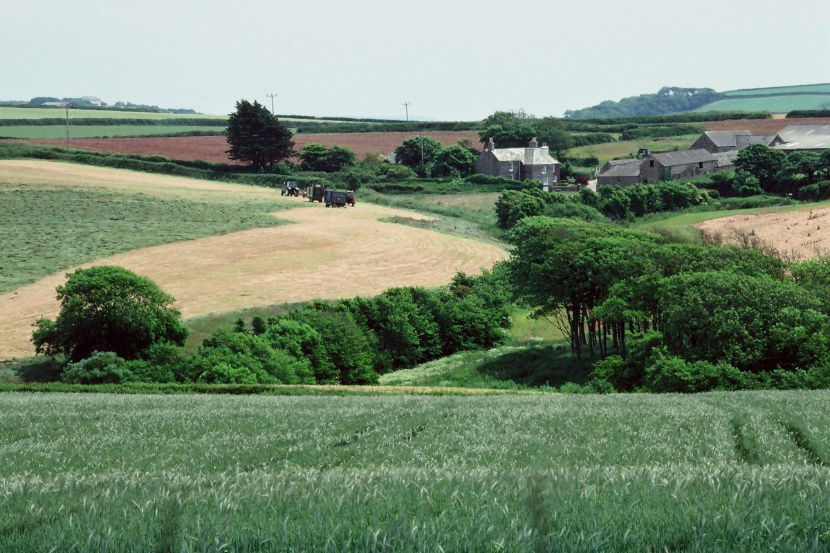 Siegfried-Salzmann-Fotografie-Cornwall.jpg