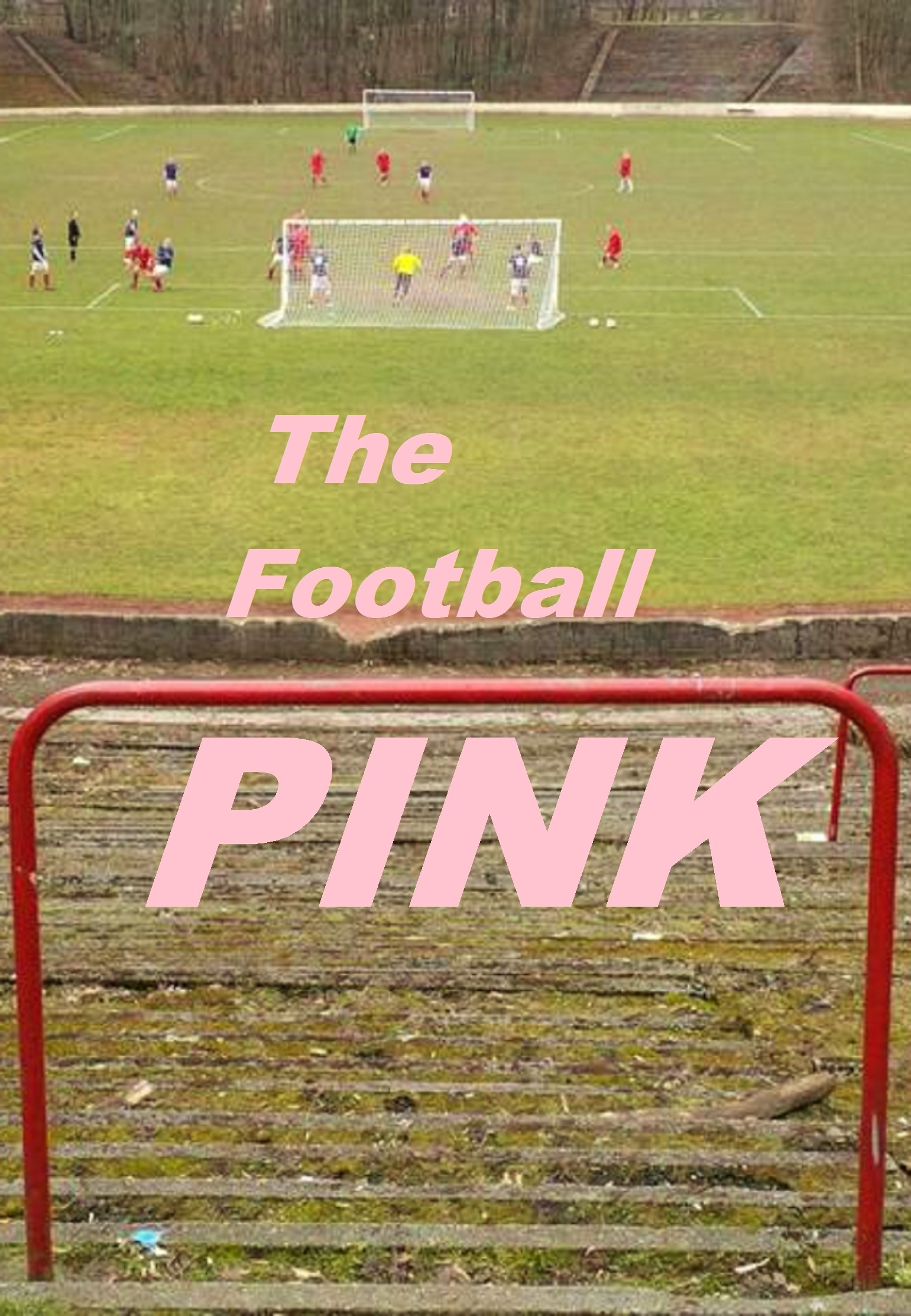 POSSIBLE PINK FRONT COVER 6.JPG