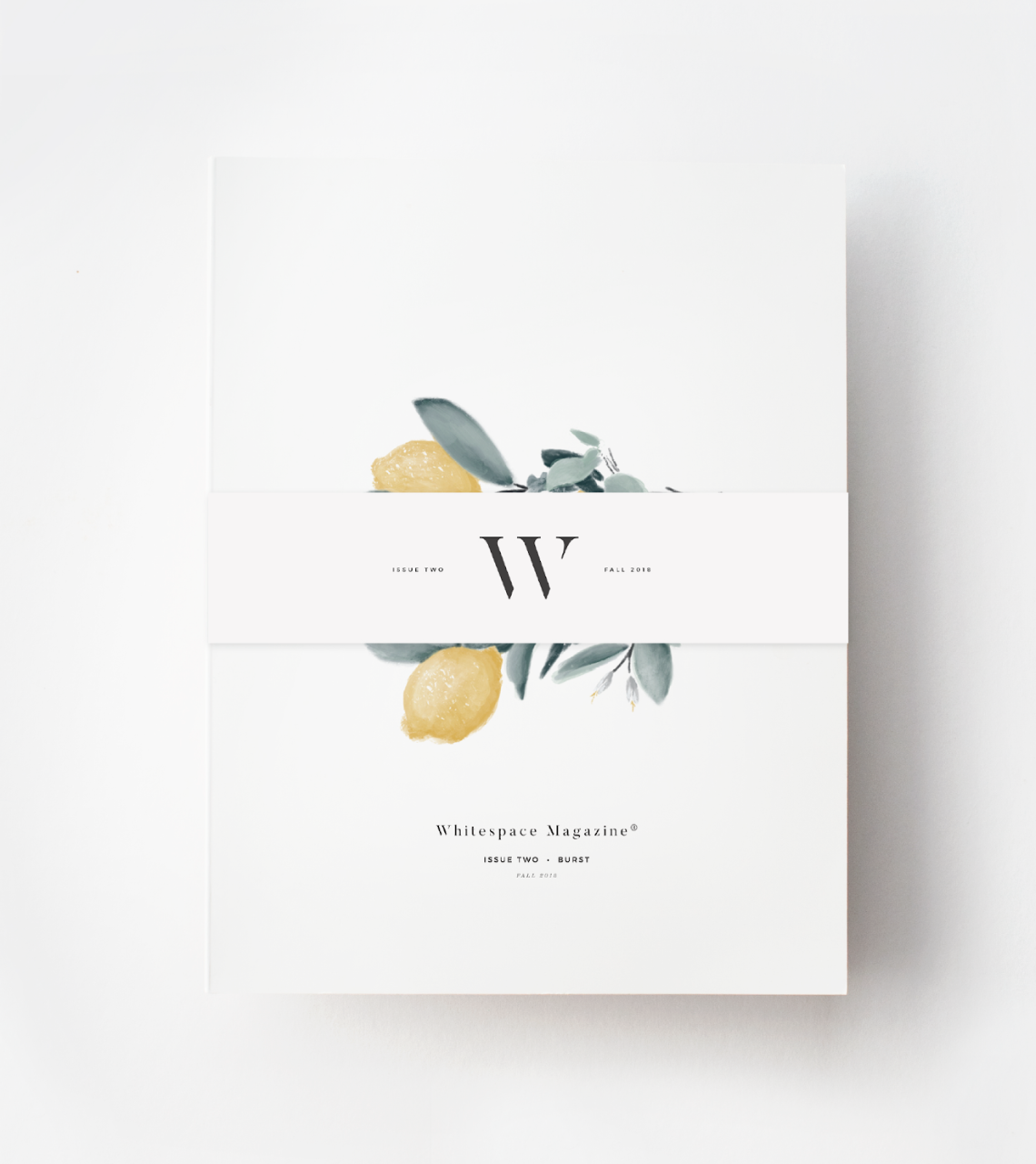 WHITE SPACE MAGAZINE - SPACES FEATURE - SPRING 2019