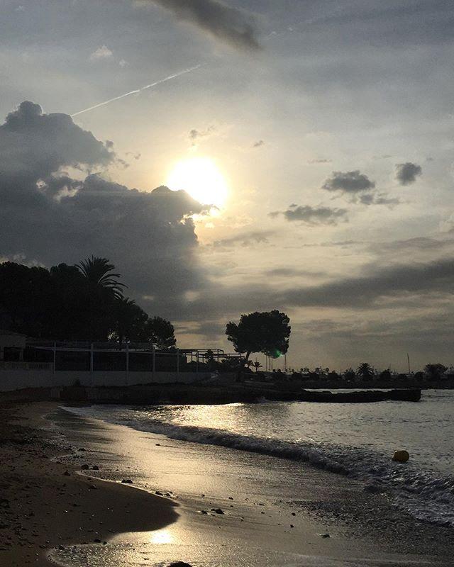 Morningwalk before yogaclass 🙏🏼 #palmademallorca #earthyoga