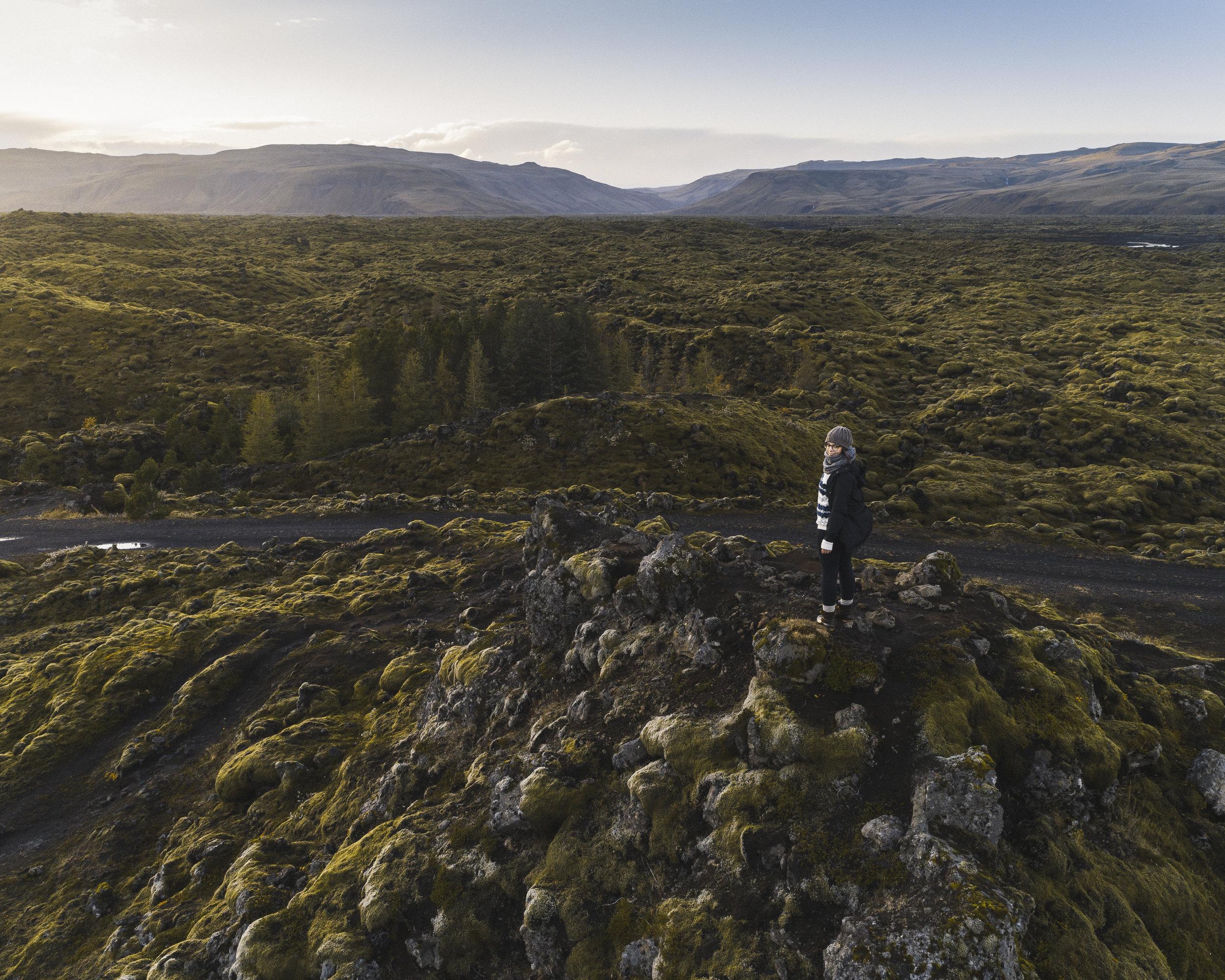 Iceland Site-29.jpg