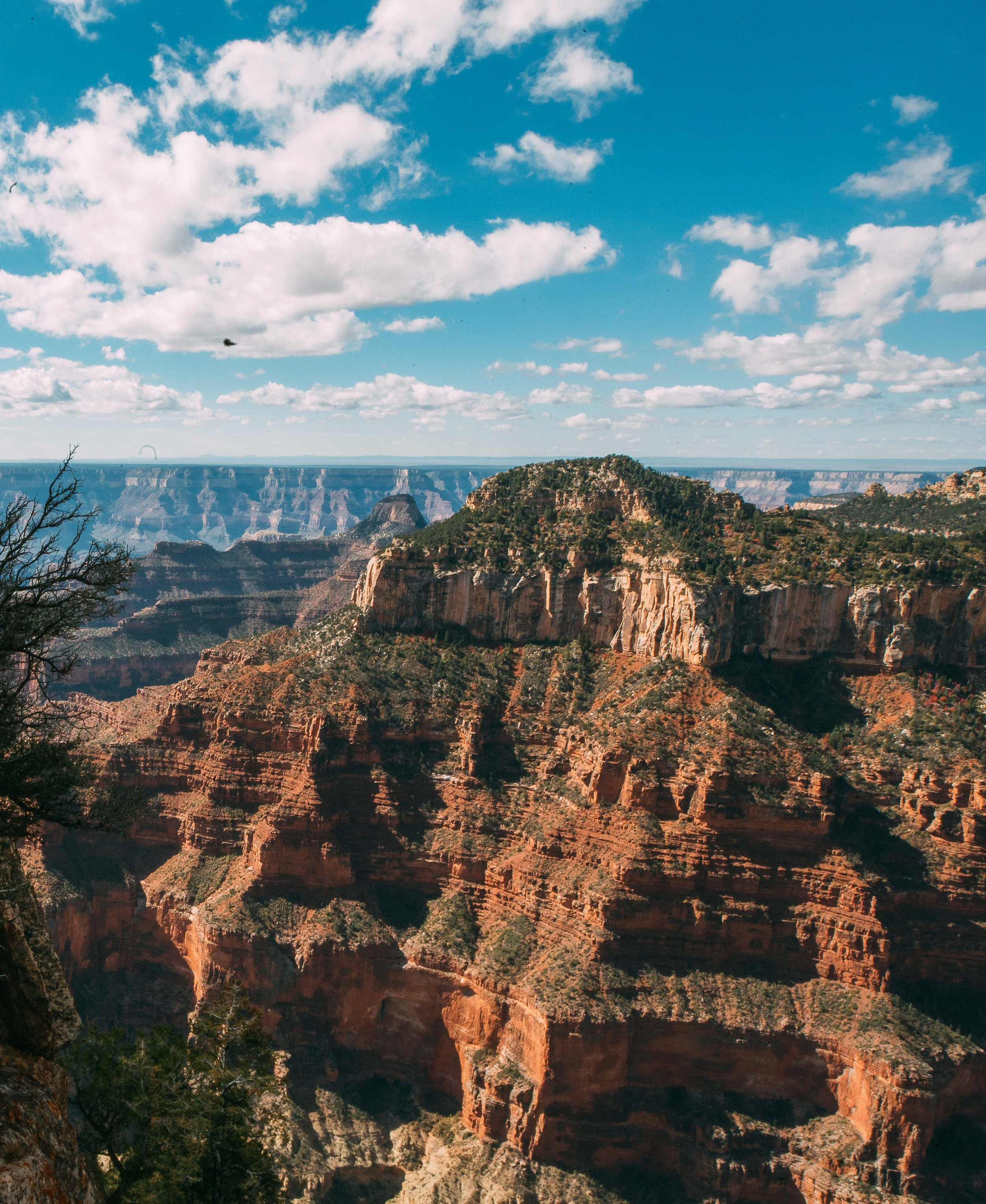 DAY 2: Grand Canyon/Bryce -