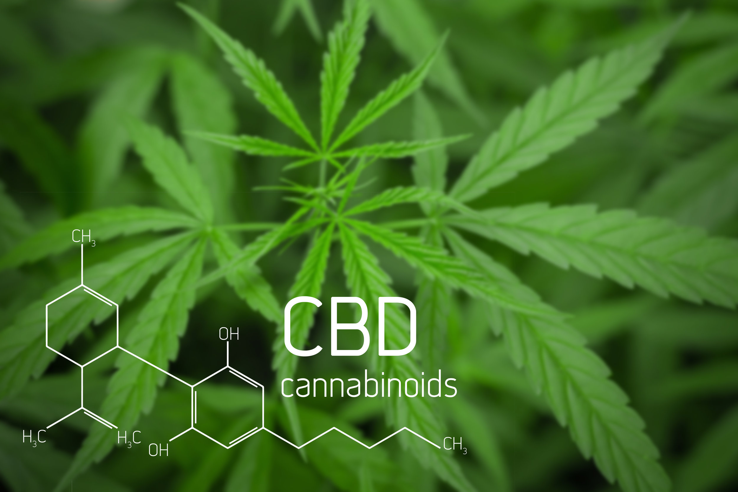 Quick Look: CBD for Athletes - Here are the best uses of this safe, legal product.By Scott Douglas