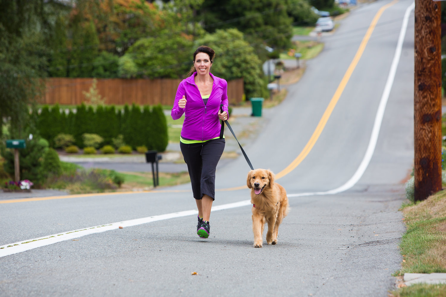 Running with your dog guide
