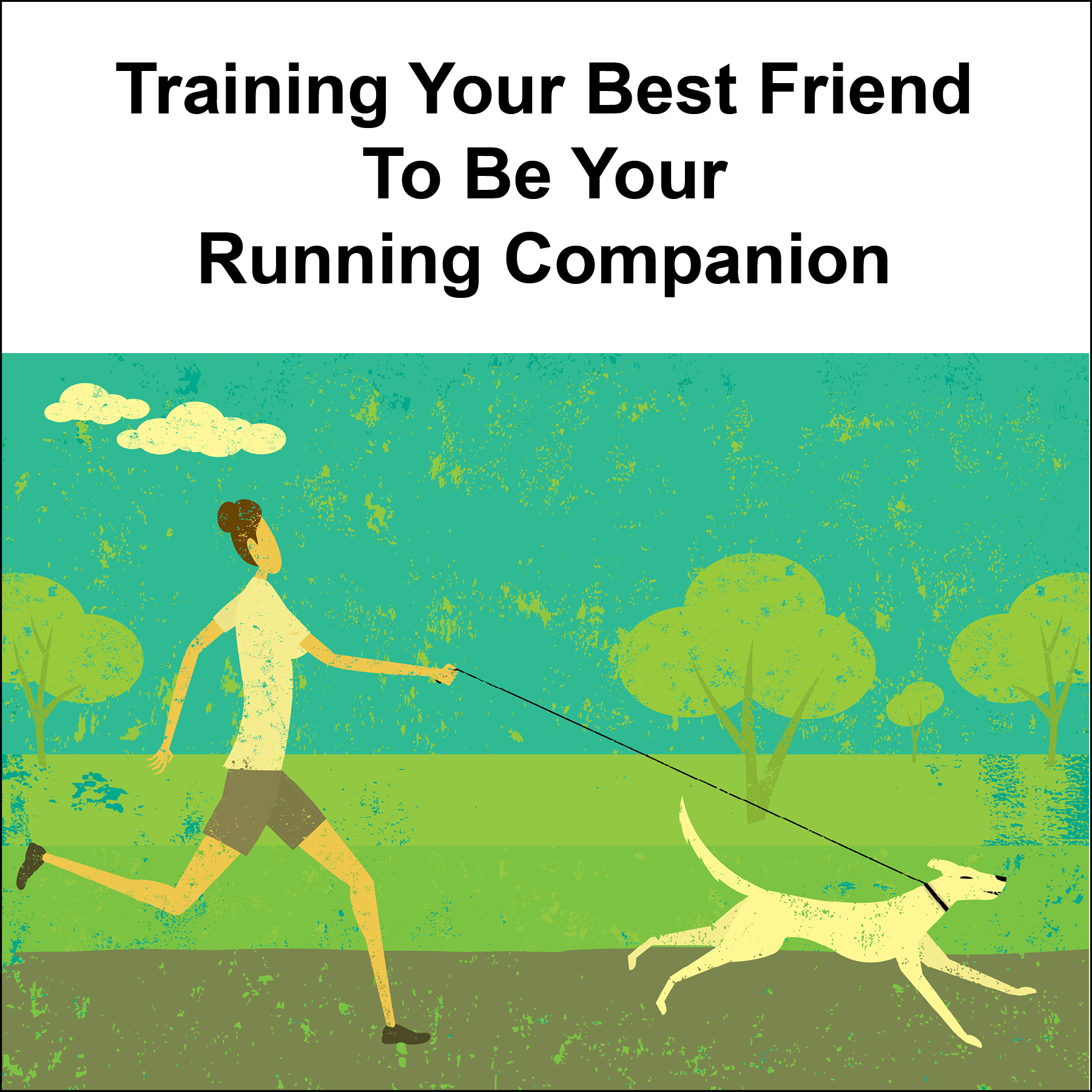 Is Your Dog Ready For A Run?