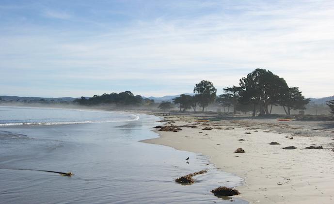 Monterey Beach, CA