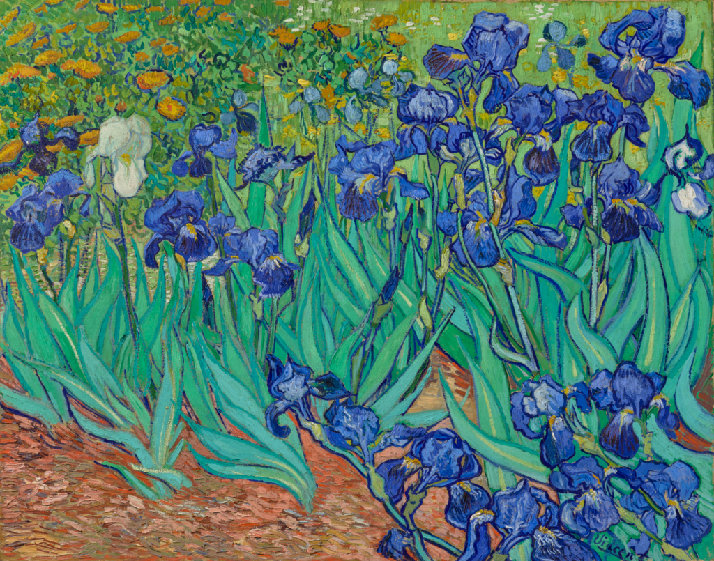 Vincent van Gogh (Dutch, 1853 - 1890),  Irises , 1889, Oil on canvas, 74.3 × 94.3 cm The J. Paul Getty Museum, Los Angeles