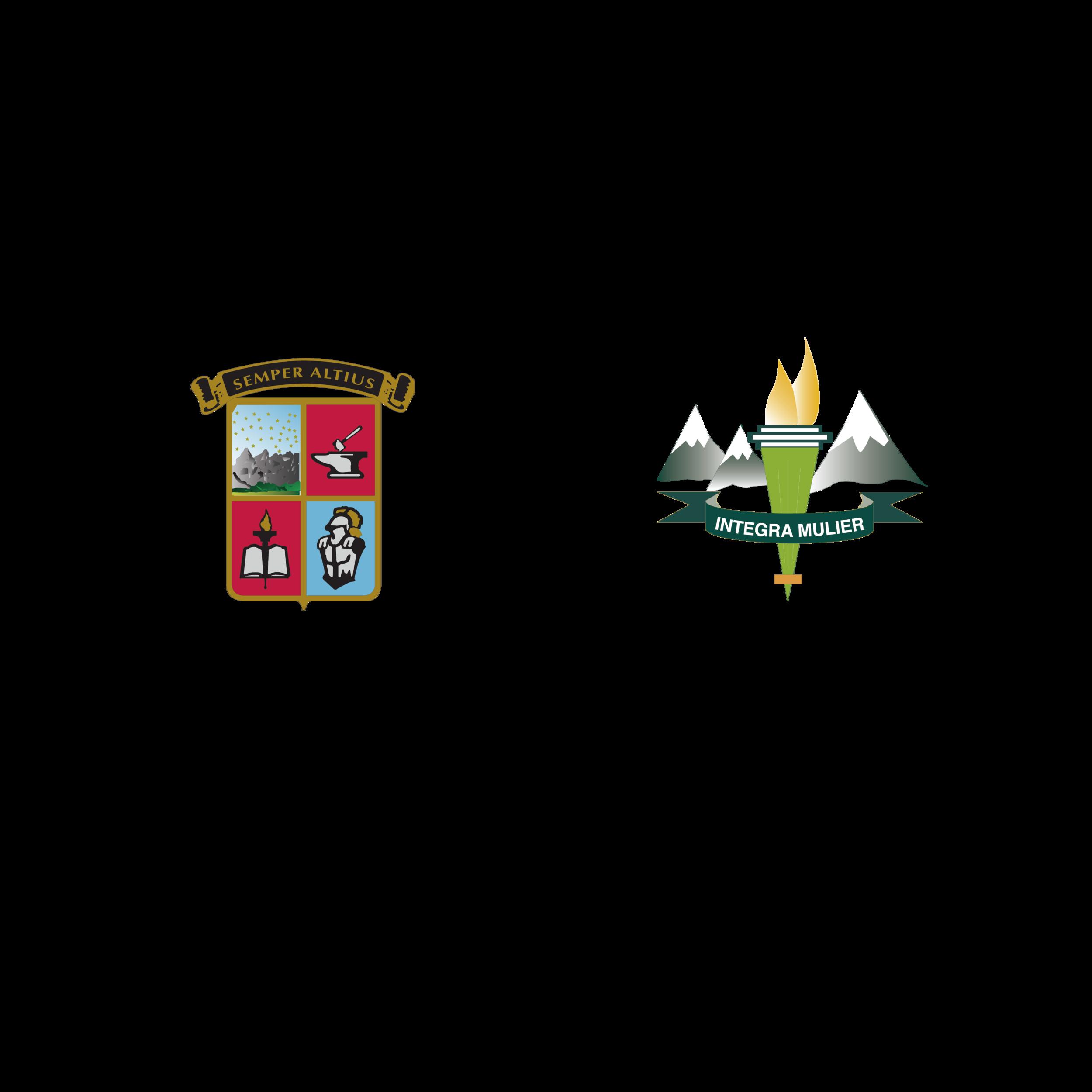 logos cumbres alpes curvas_Mesa de trabajo 1.png