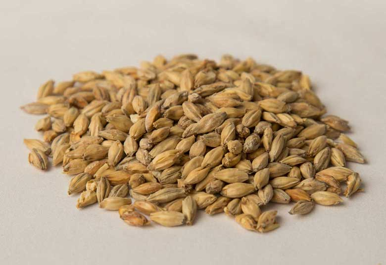 PALE - 2-row barley grown with malting specifications in mine. This malt is light in color, keeping the enzyme activity in tact. Perfect for a base malt in any brew.Available as 25 KG or 50 lbs crushed.