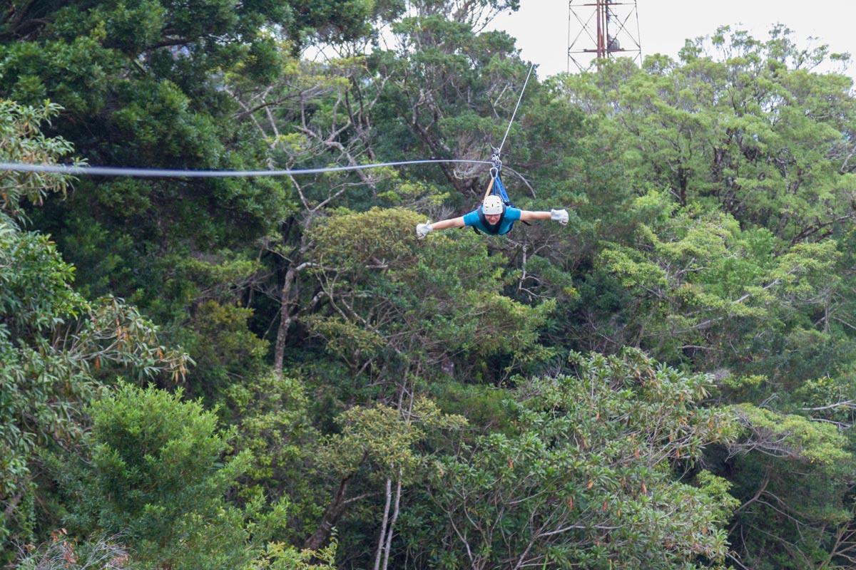 Canopy Zipline Tours -