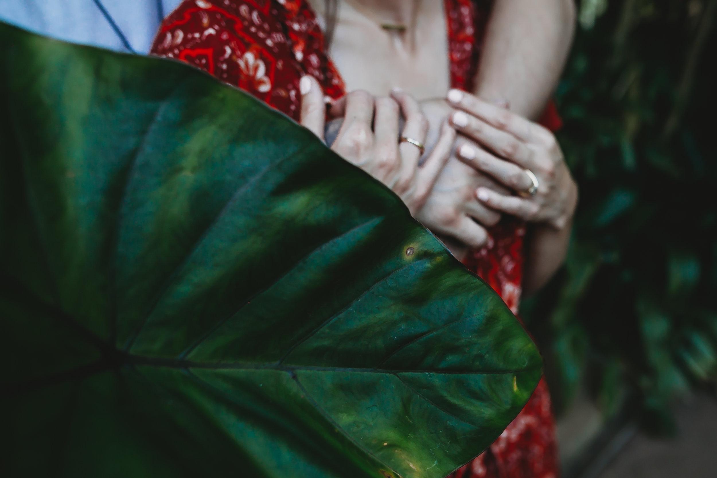Clare Gordon Photography-Hamilton-gardens-engagement-photo (19 of 147).jpg