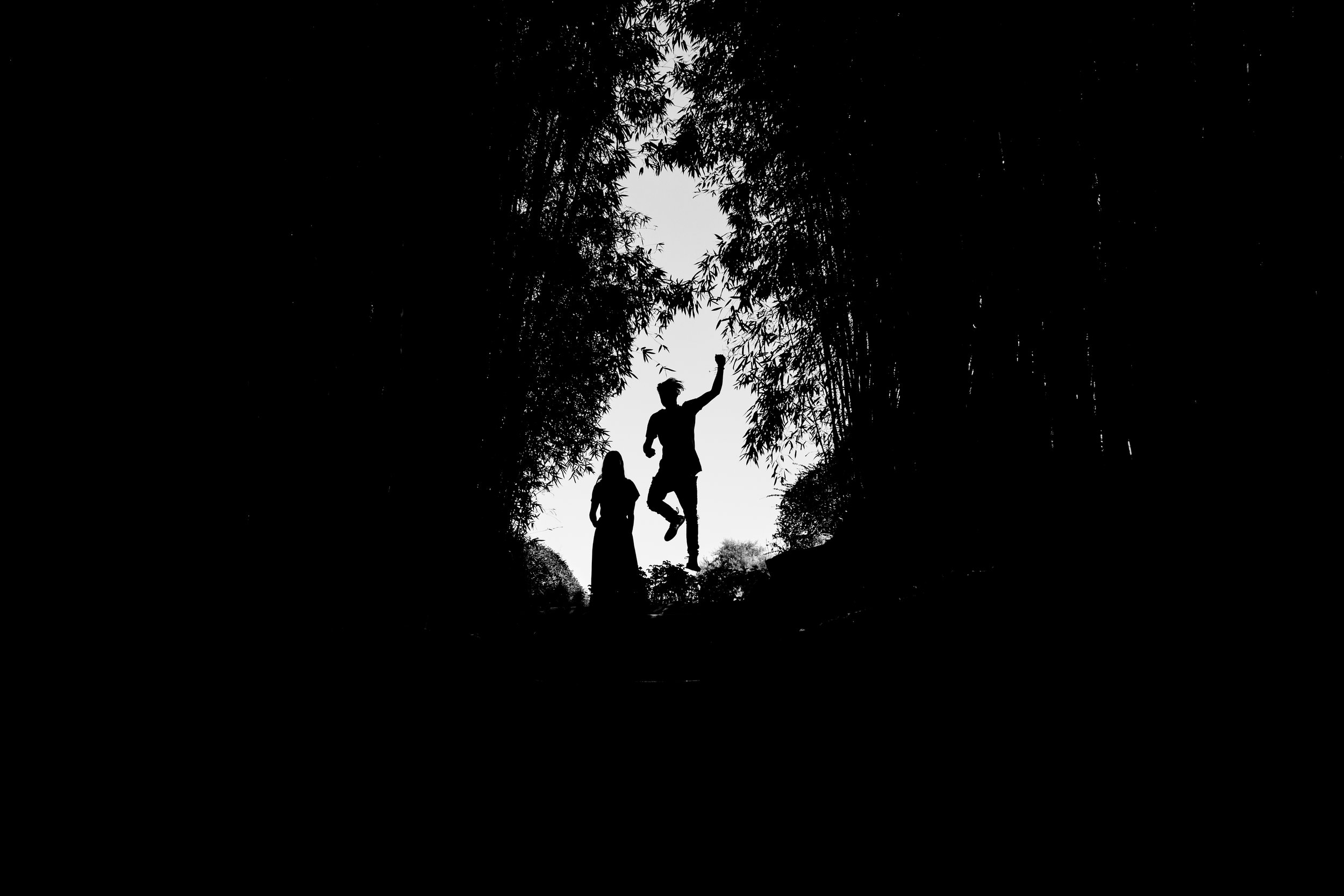 Clare- Gordon -Photography-Black- and -white-Hamilton-gardens-engagement-photo (81 of 147).jpg