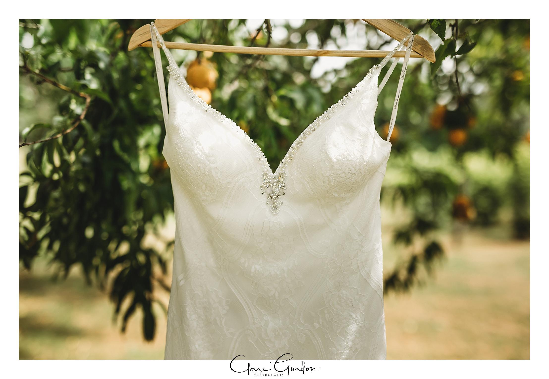 Waikato-wedding-photographer-Forest-weddnig-Hamilton-wedding-Newzealand (19).jpg