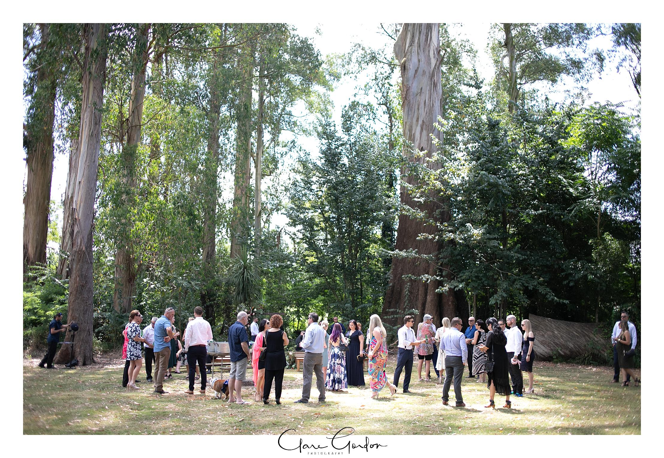 Waikato-wedding-photographer-Forest-weddnig-Hamilton-wedding-Newzealand (59).jpg