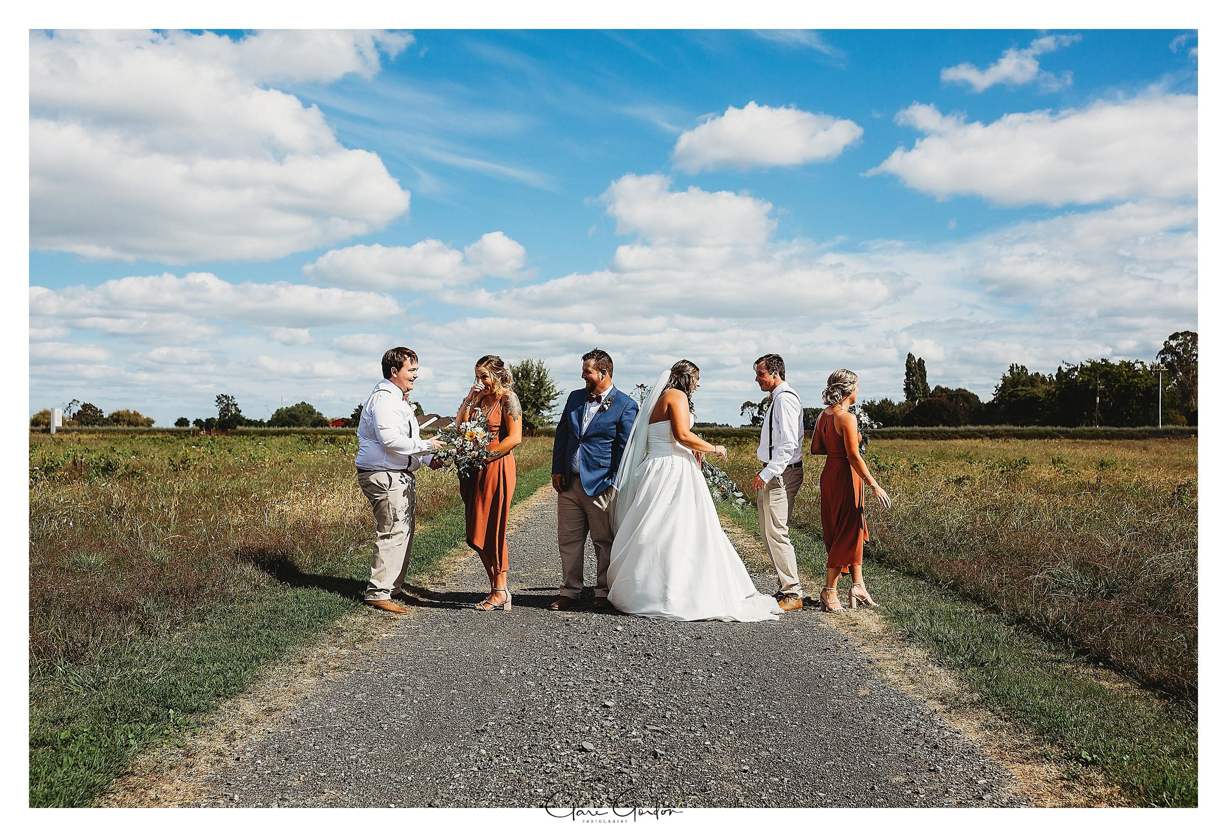 Wedding-bridal-party-photo