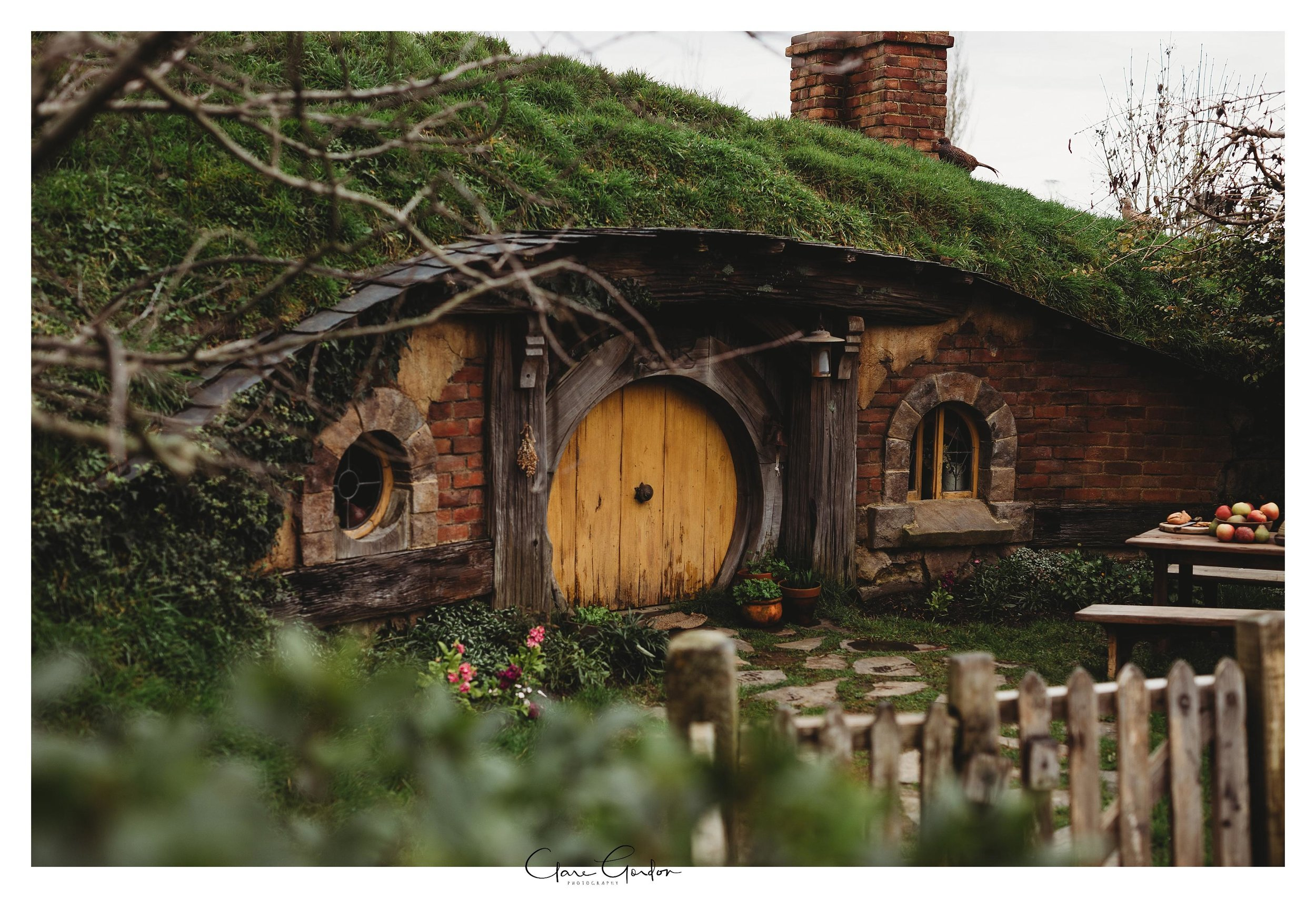Hobbiton-movie-set-wedding-photo-matamata-bride-and-groom-Photo_newZealand-wedding-photographer (10).jpg