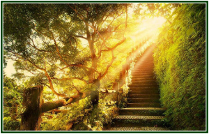 path-to-happiness-300x192.png