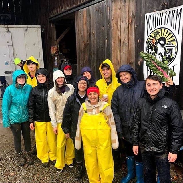 Members of CSC braved the cold and rain last weekend to volunteer at the @youthfarmproject as part of Into the Streets 2018. The Youth Farm Project connects youth to the land and to each other, teaches sustainable farming practices, and engages young people as agents of change in building an equitable food system.