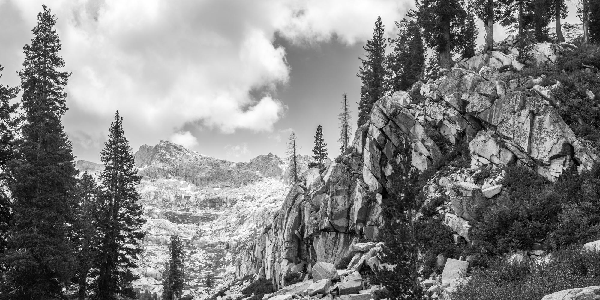 sequoia-1.jpg