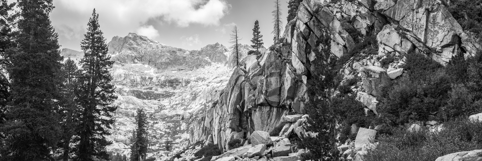 sequoia national park -
