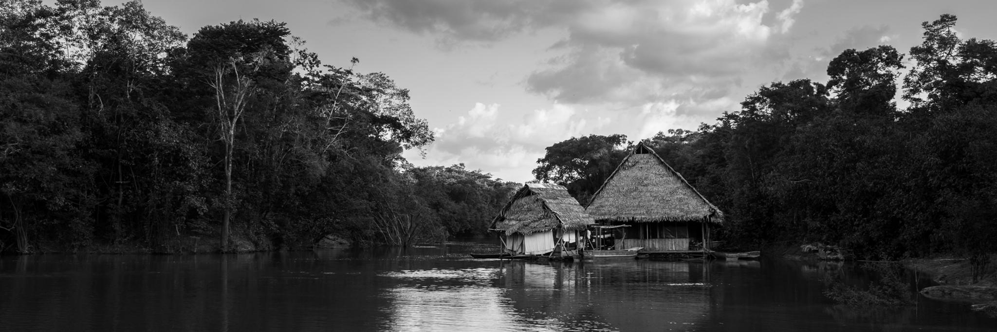 peruvian amazon -