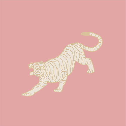 Custom Illustration - Tigre!