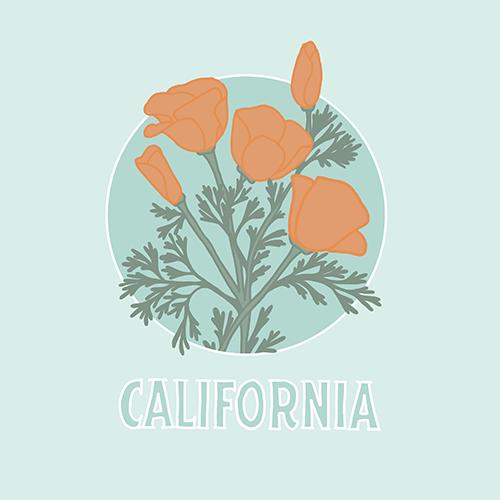 Custom Illustration - California