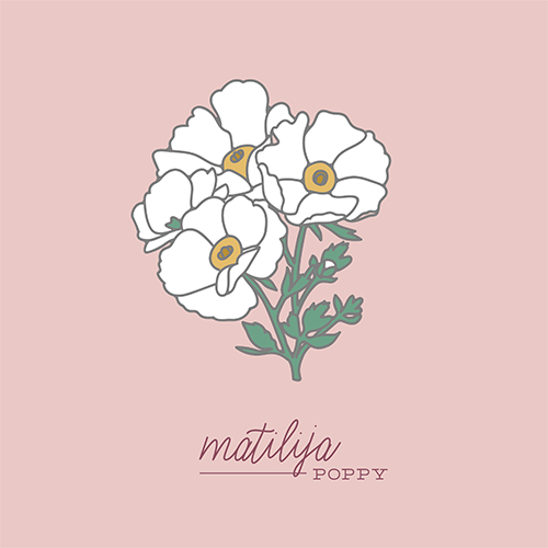Custom Illustration - Poppies