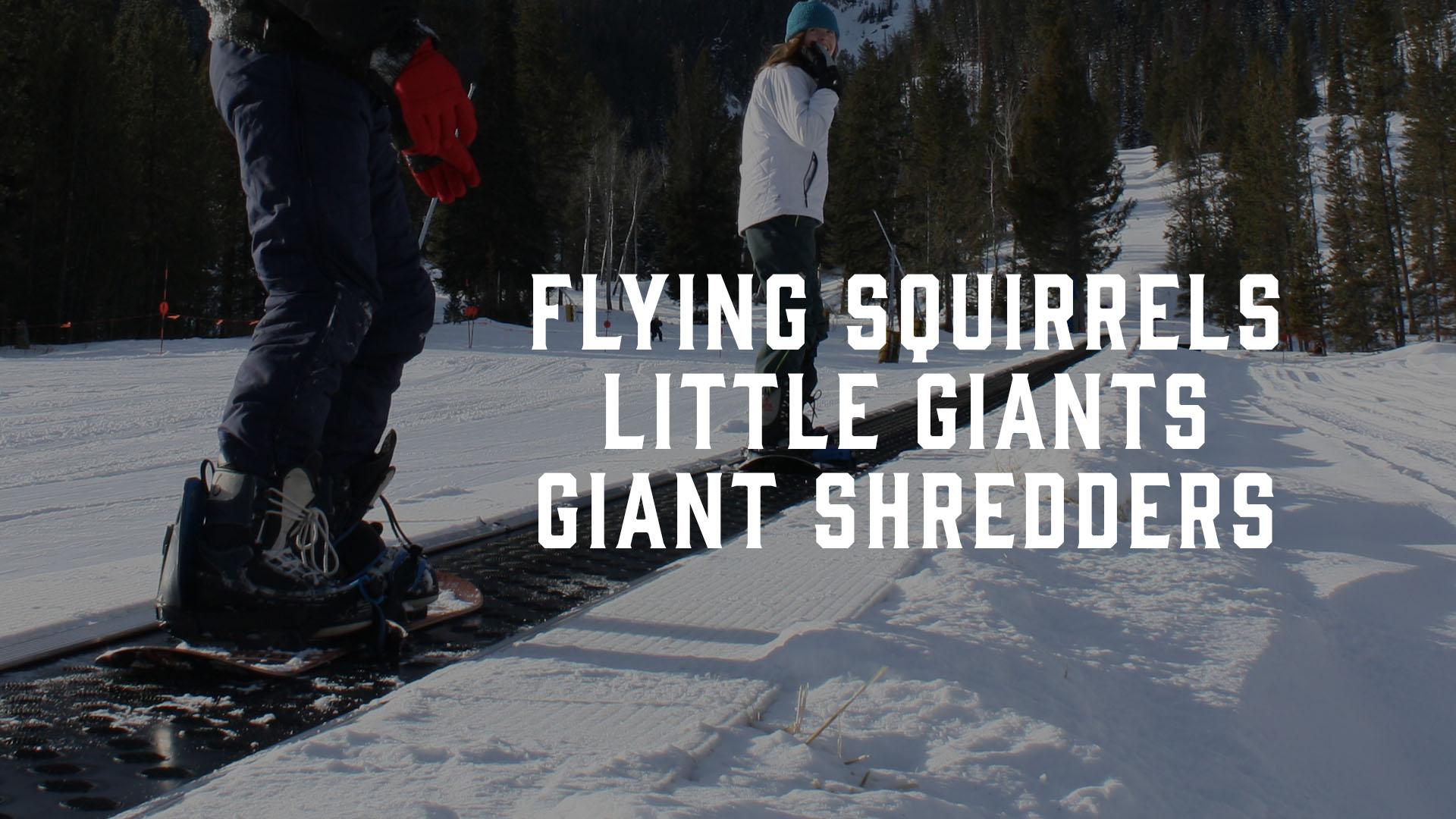 Flying Squirrels, etc. – FB Banner.jpg