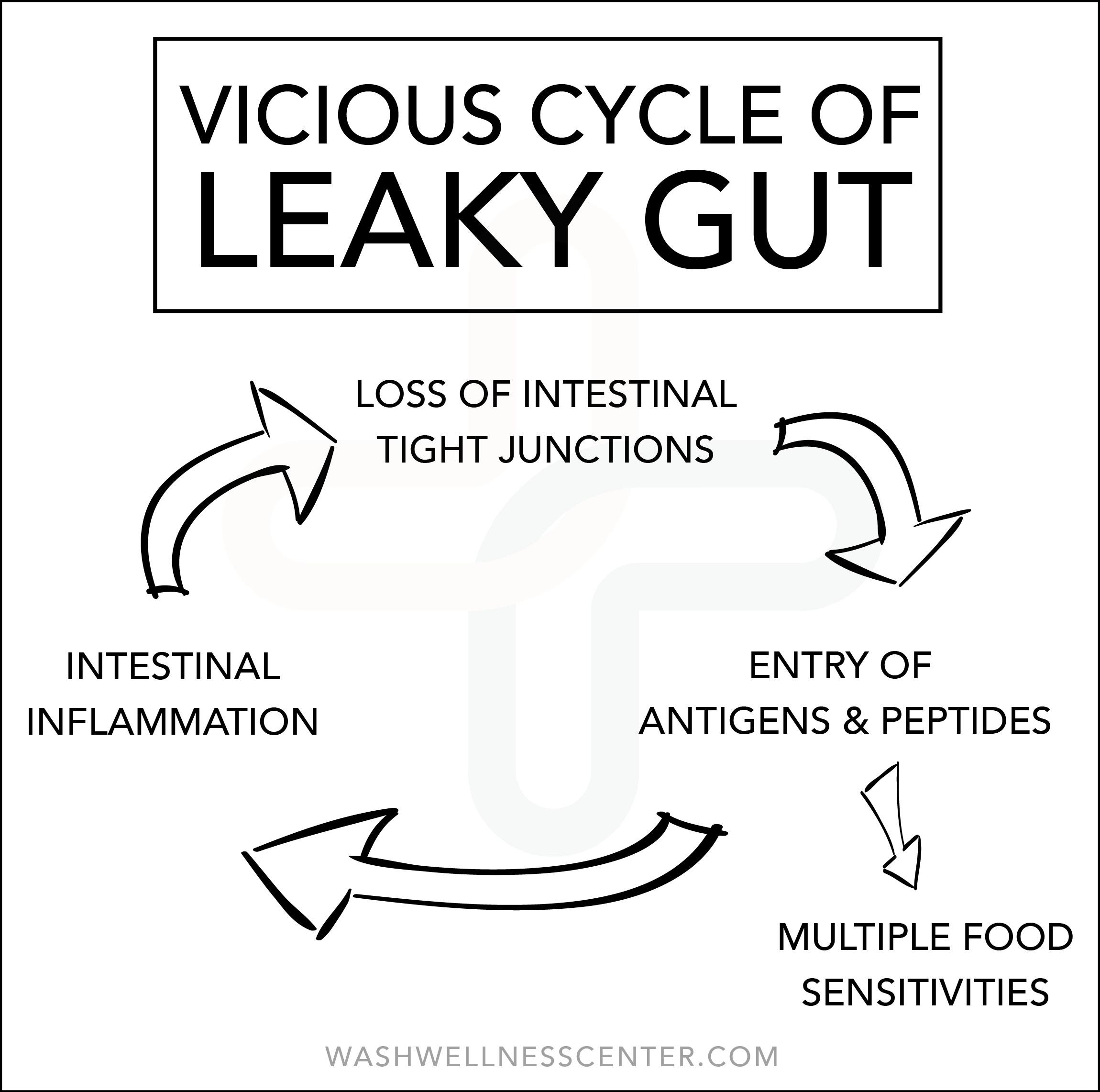Leaky+Gut+Cycle.jpg
