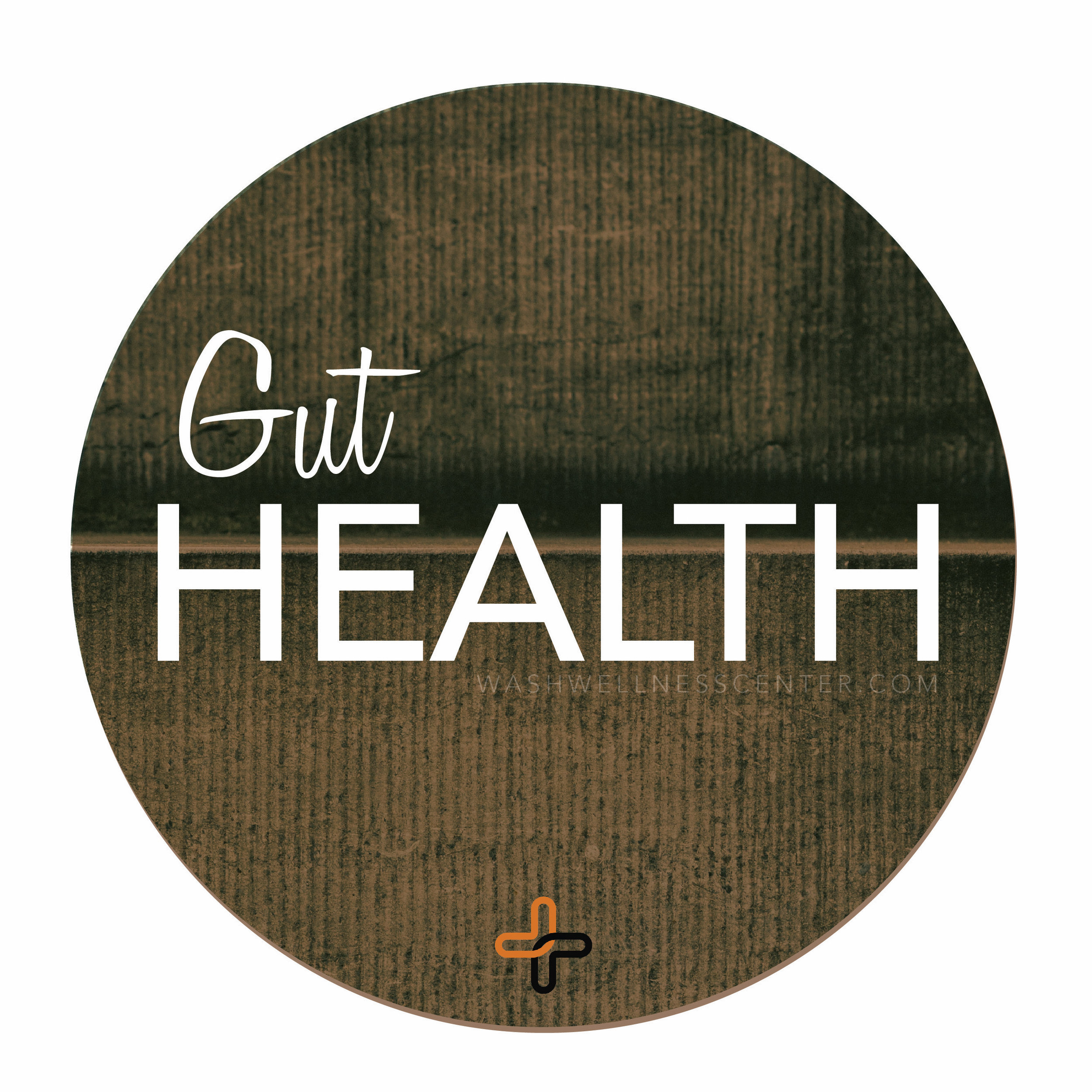 Webinar.Images_Gut+Health.jpg