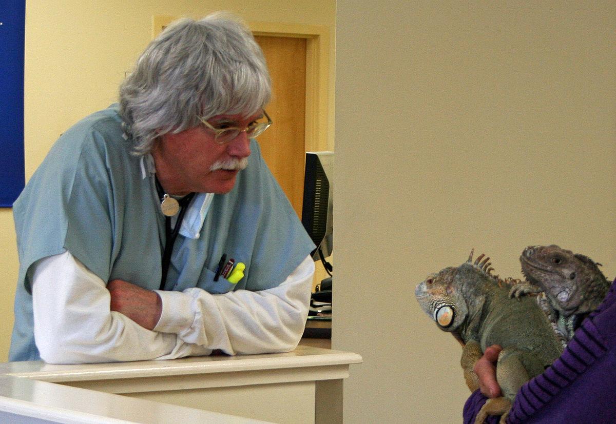 Dr Kevs Animal Kingdon.JPG
