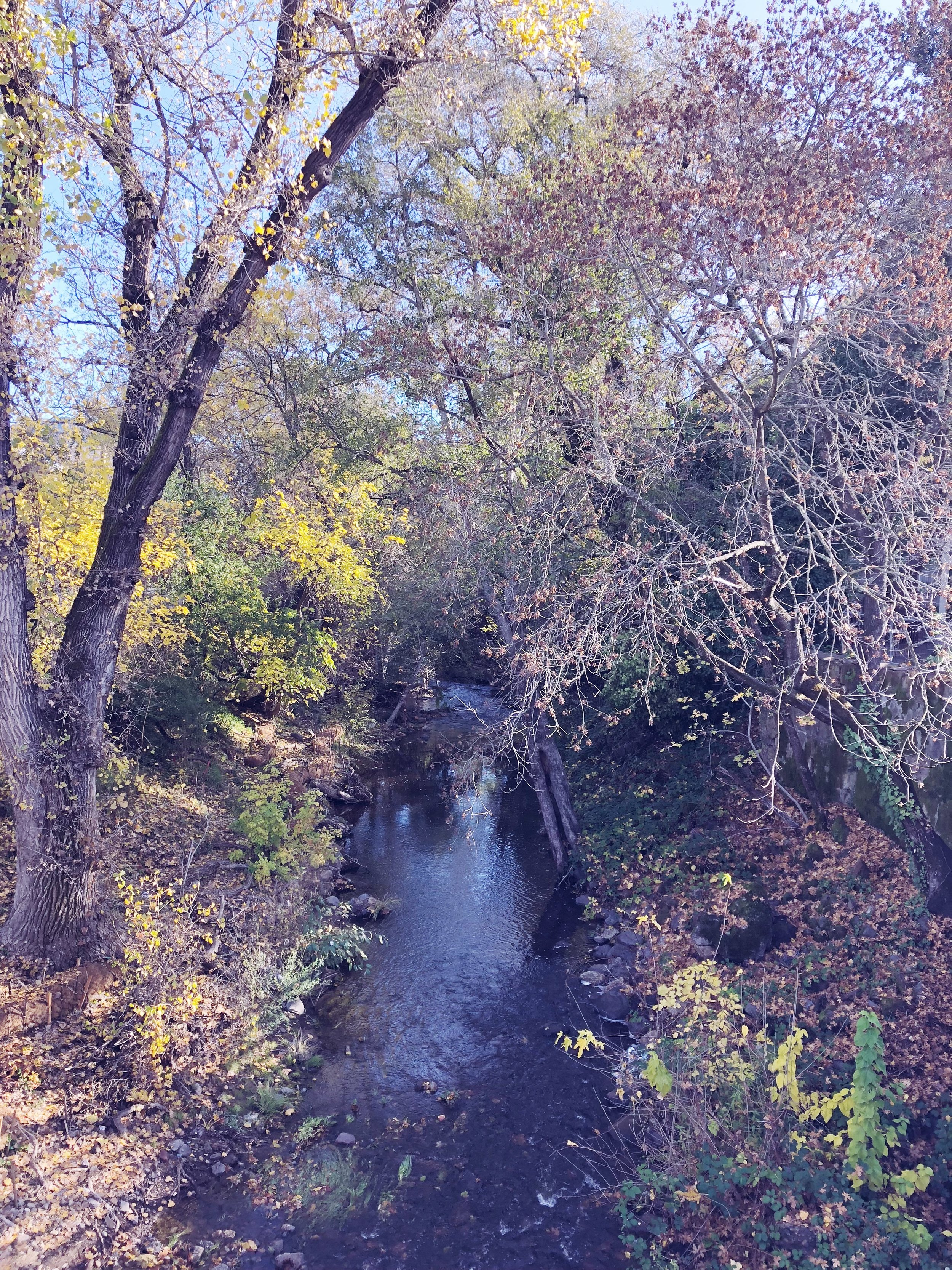 The Napa River flows through downtown Calistoga