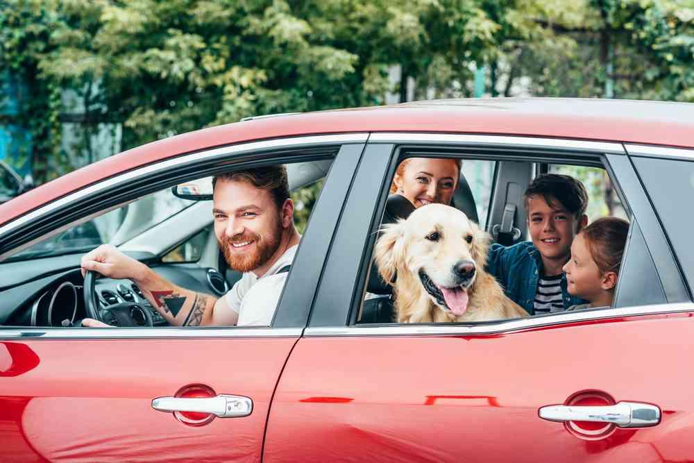 Auto Insurance — Taylor & Associates Insurance Agency