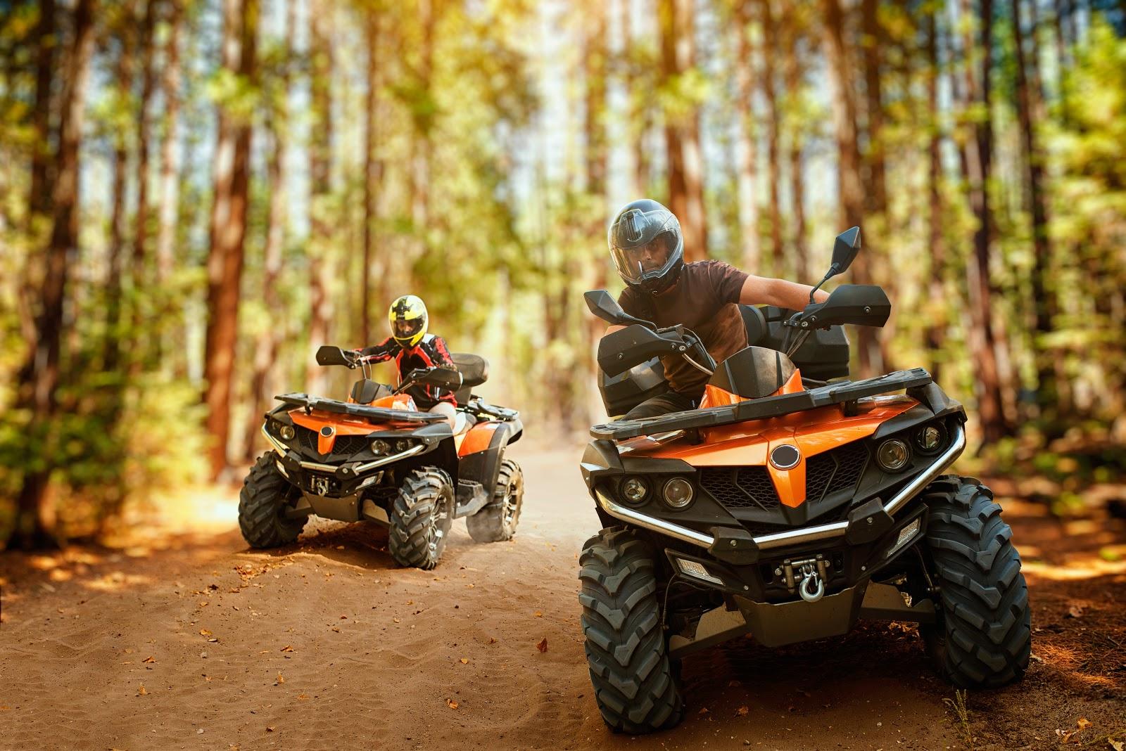 ATV Riders in Woods.jpeg