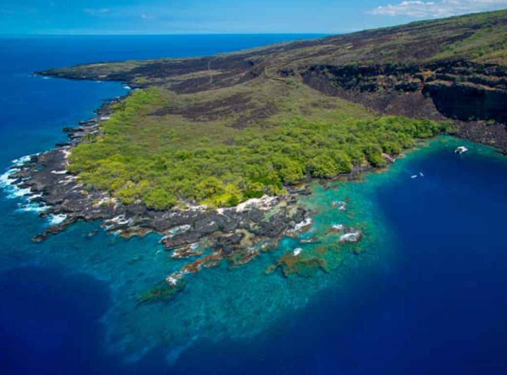 big_island_kealakekua_hi_-_Google_Search.png