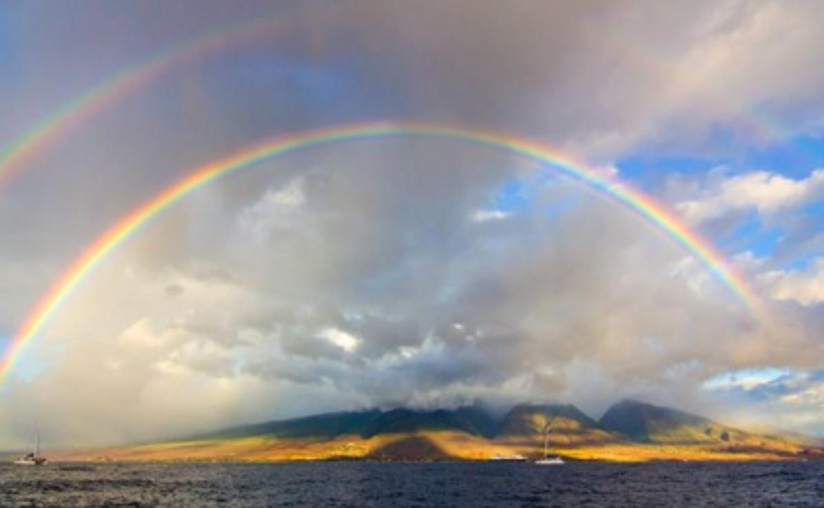 rainbow_hawaii_-_Google_Search.png