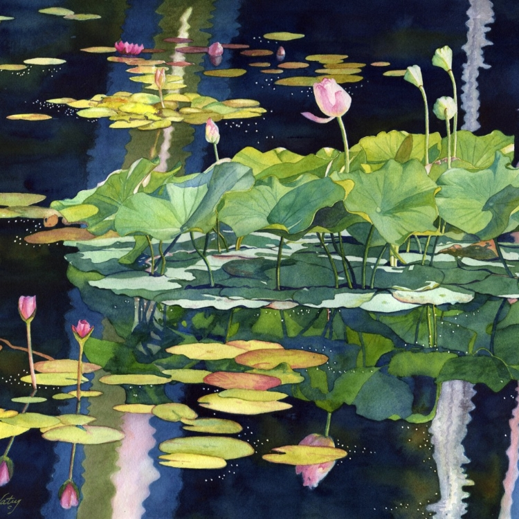 """Waterlily Chorus"" Watercolor by Lorraine Watry"