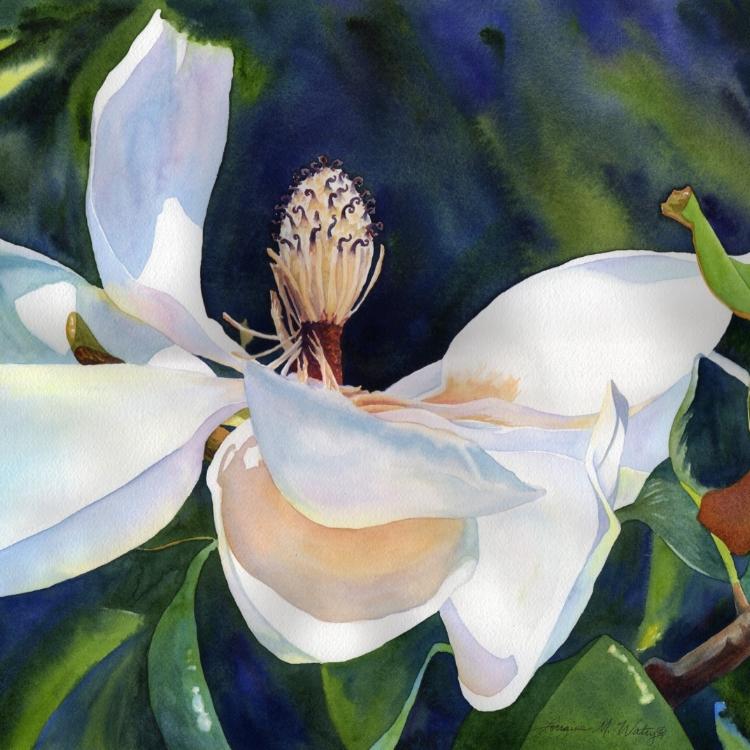 """Magnolia's Last Hurrah"" Watercolor by Lorraine Watry"